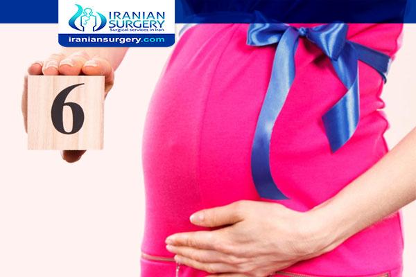 مخاطر الشهر السادس من الحمل فقر الدم عند الحامل في الشهر الساد مشاکل الحمل في الشهر السادس