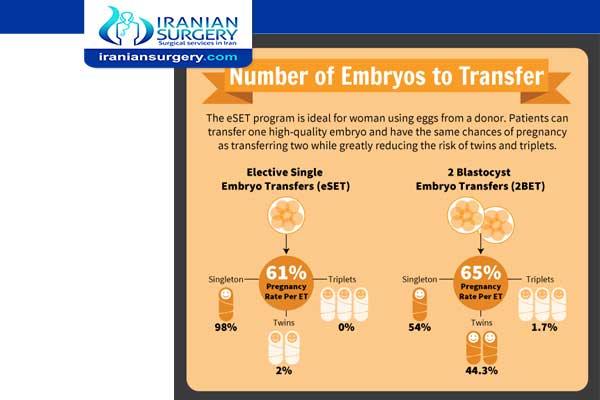 2 blastocyst transfer twin rate