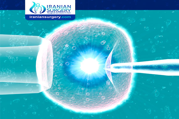 Assisted hatching ivf