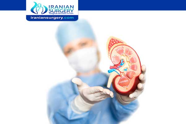 Kidney Transplant in Iran