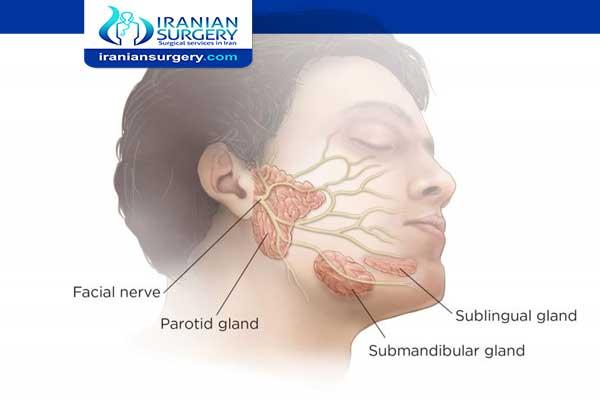 انتفاخ الغدد اللعابية تحت الفك السفلي اسباب انتفاخ الغدد اللعابية تحت الفك السفلي