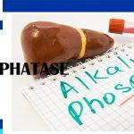 ALK.Phosphatase