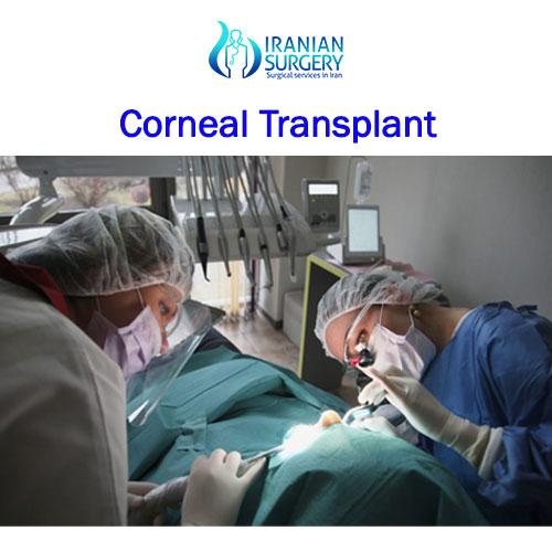 corneal-transplant2 500 500