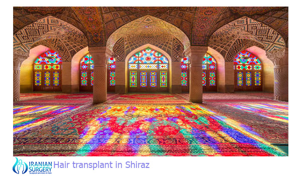 hair transplant in shiraz