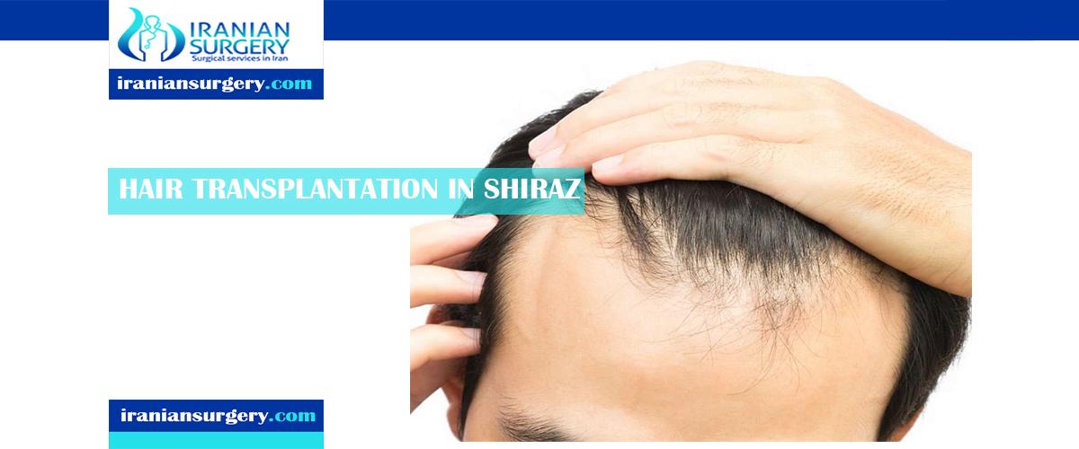 hair transplant in iran shiraz