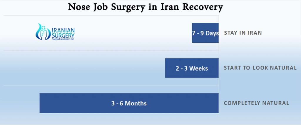 best rhinoplasty surgeon iran