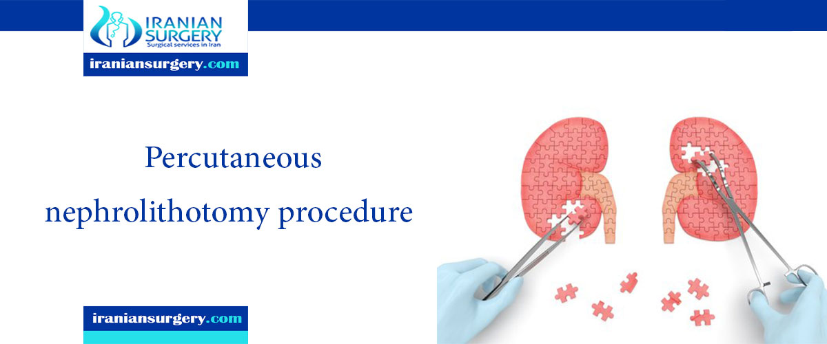 percutaneous nephrolithotomy procedure